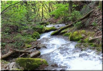 фото реки Дерекойка