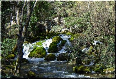 фото реки Хаста-Баш