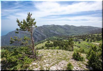 фото в Крымском заповеднике