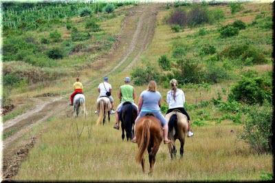 конные катания в Крыму