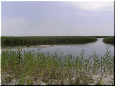 фото Бакальского озера