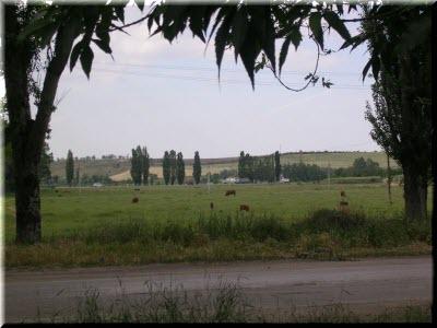 фото поселка Зуя