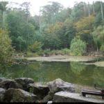 Караголь — красивое озеро на склонах горы Могаби