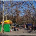 Комсомольский парк: детские развлечения в Севастополе