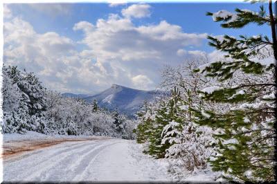 погода в Крыму зимой