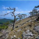 Мисхорская тропа: из Кореиза пешком на Ай-Петри