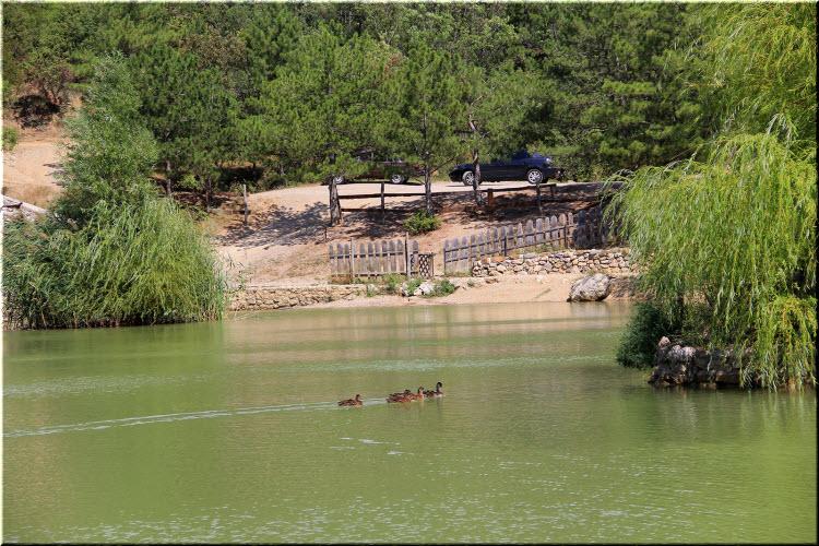озеро в Васильевке