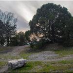 Милютинский — графский парк между Симеизом и Алупкой