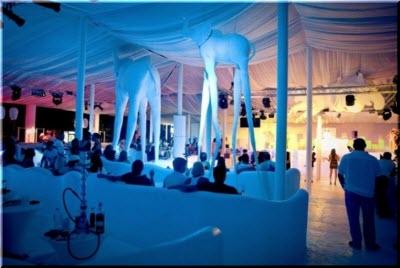 ночной клуб Белый