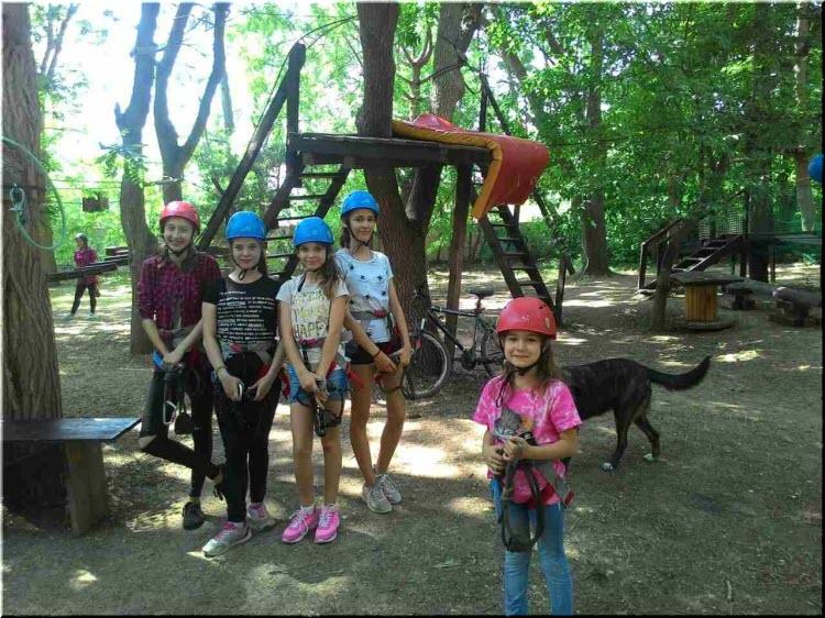 посетители Веревочного парка