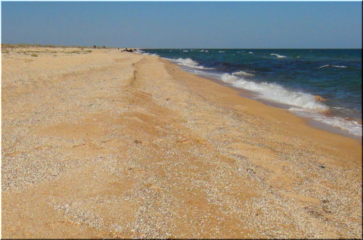 ракушечные пляжи Арабатской стрелки