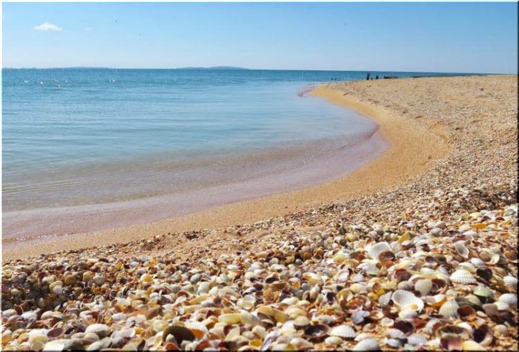 ракушечные пляжи в Феодосии