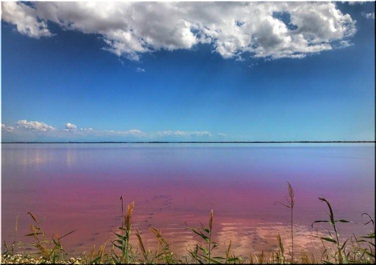 Розовое озеро в Евпатории