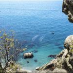 Рейтинг лучших диких пляжей около Судака — ТОП-5