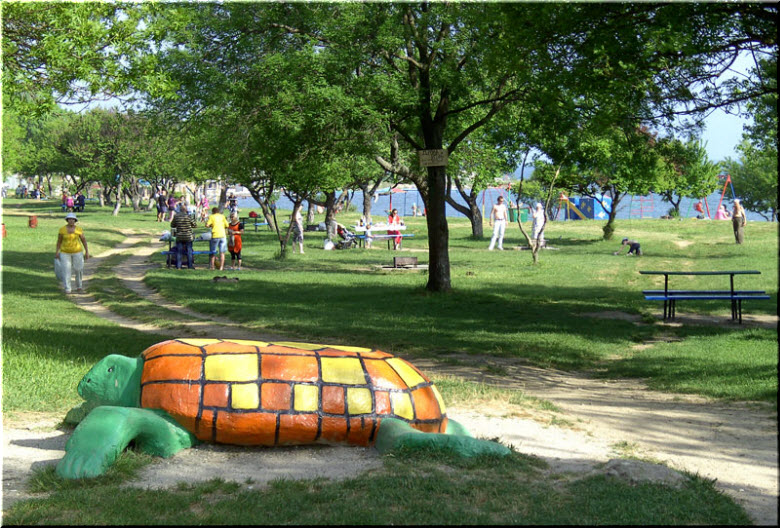 фото скульптуры черепахи у пляжа