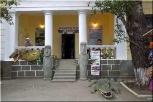 Крокодиловая ферма в Феодосии