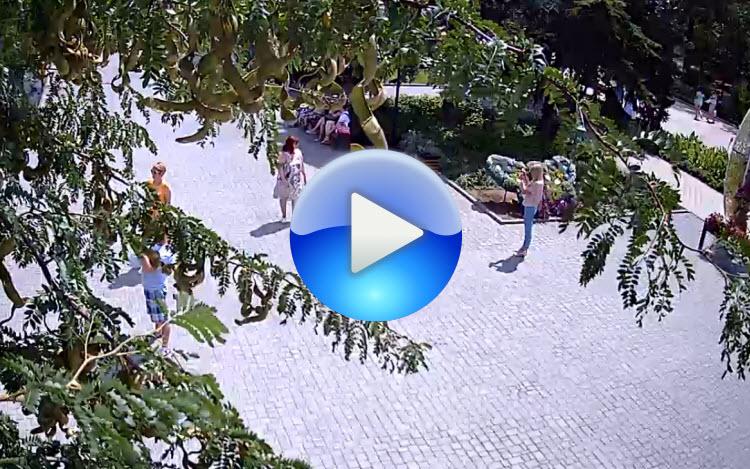 веб-камера в Театральном сквере