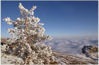 новый год в горах Алушты