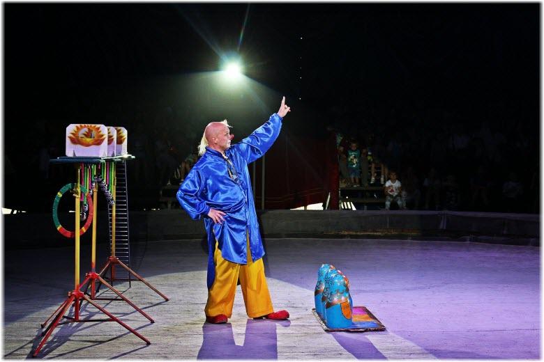 на арене Севастопольского цирка