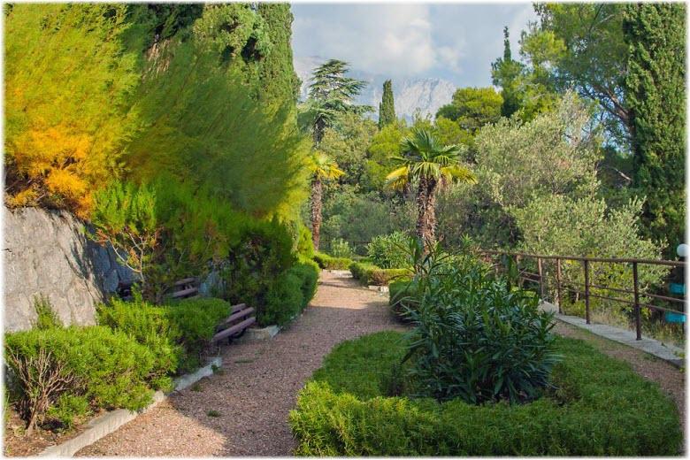 деревья и растения парка