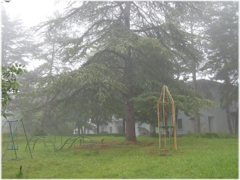 детские площадки поселка