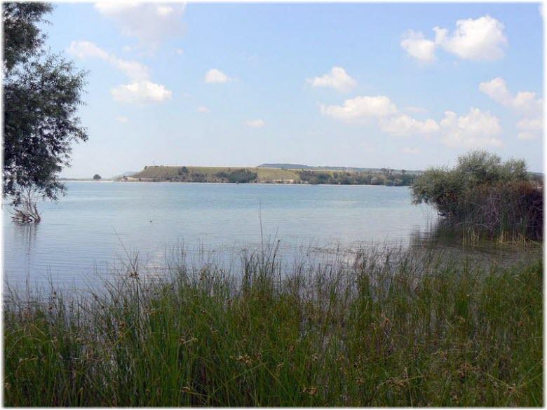 берега Альминского водохранилища