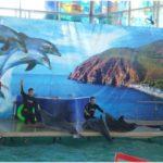 дельфинарий в санатории Крым