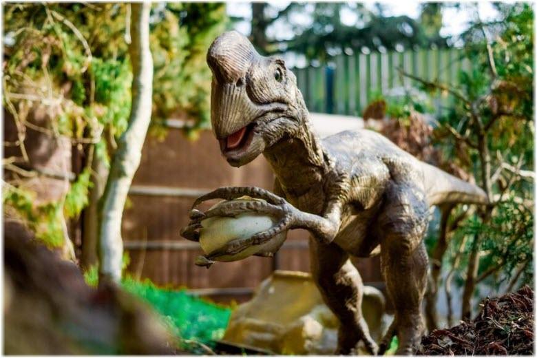 фото парка динозавров в Севастополе