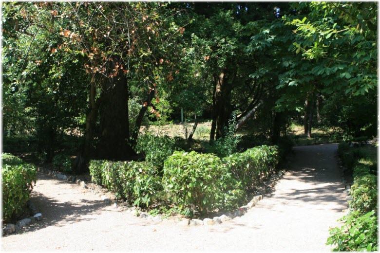 парк усадьбы Кучук-Ламбат
