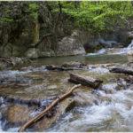река Восточный Улу-Узень