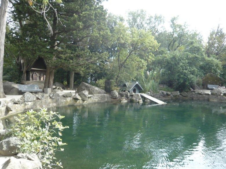 Один из прудов в чудесном парке Воронцовых
