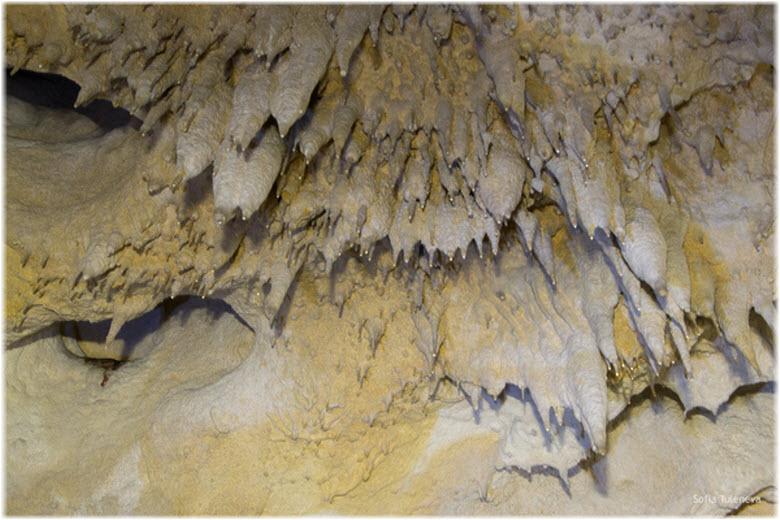 наросты внутри пещеры